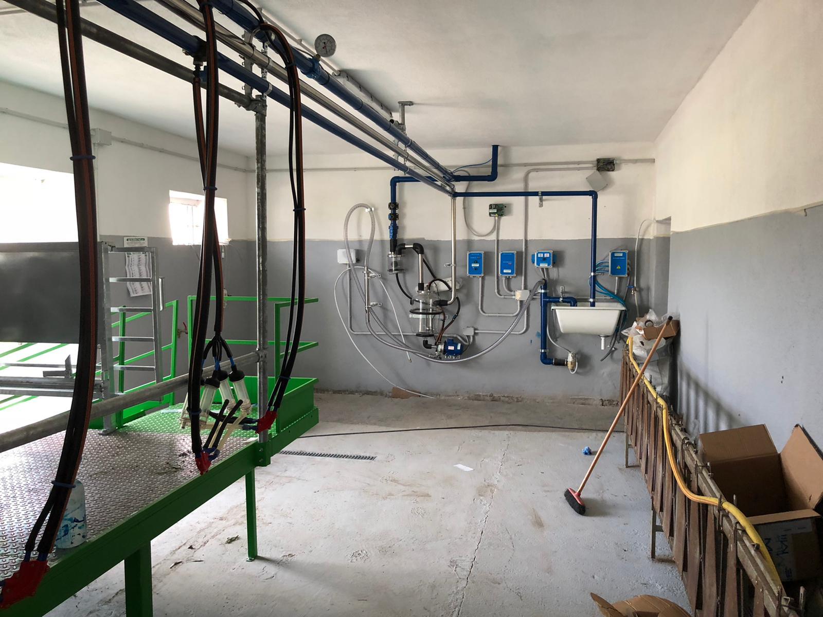 impianto mungitura ovini a lattodotto con vasolatte